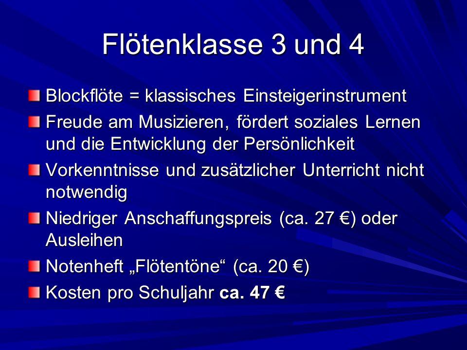 Blockflöte = klassisches Einsteigerinstrument Freude am Musizieren, fördert soziales Lernen und die Entwicklung der Persönlichkeit Vorkenntnisse und z