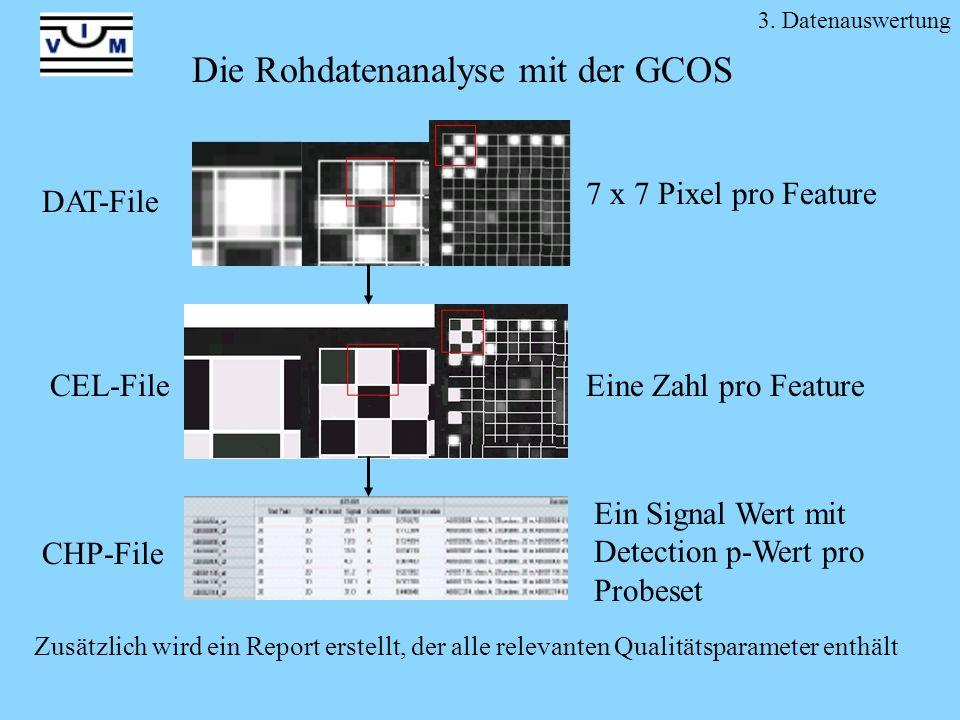 3. Datenauswertung Die Rohdatenanalyse mit der GCOS DAT-File CEL-File 7 x 7 Pixel pro Feature Eine Zahl pro Feature Ein Signal Wert mit Detection p-We
