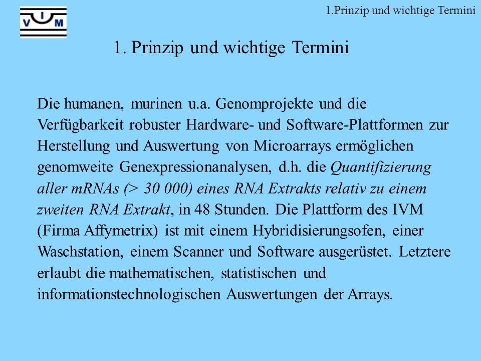 1. Prinzip und wichtige Termini Die humanen, murinen u.a. Genomprojekte und die Verfügbarkeit robuster Hardware- und Software-Plattformen zur Herstell