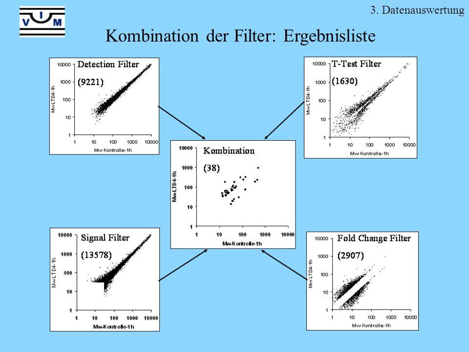 3. Datenauswertung Kombination der Filter: Ergebnisliste