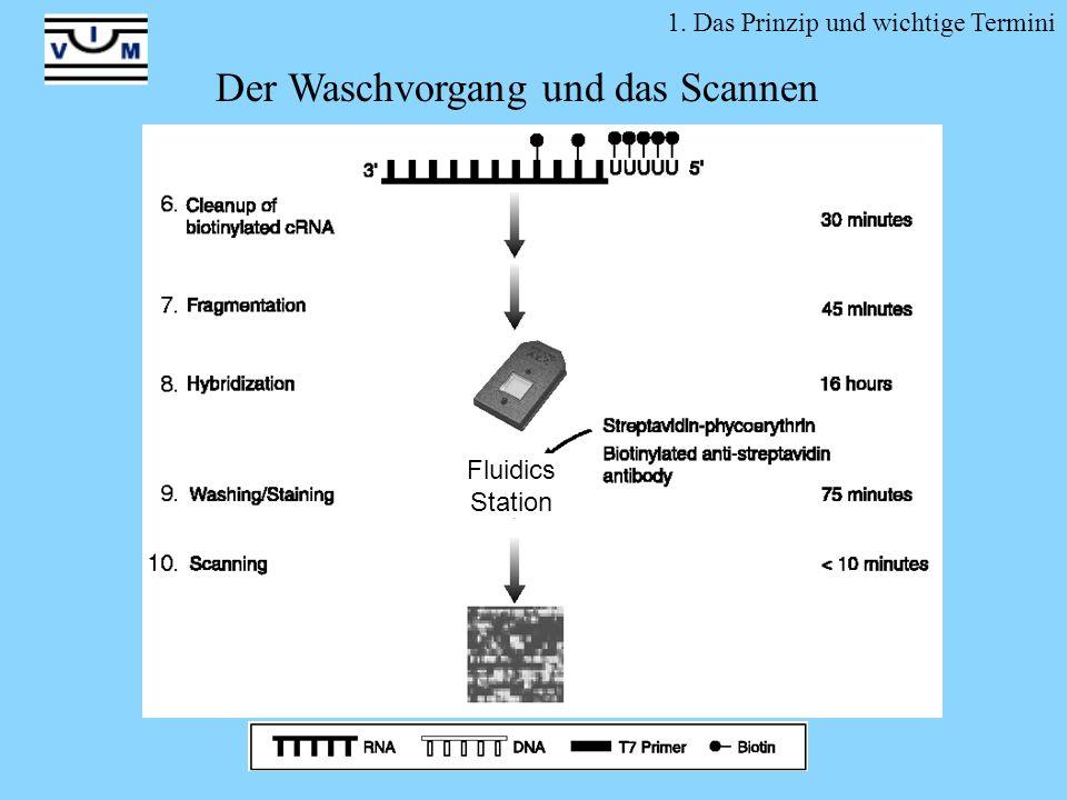 Fluidics Station 1. Das Prinzip und wichtige Termini Der Waschvorgang und das Scannen