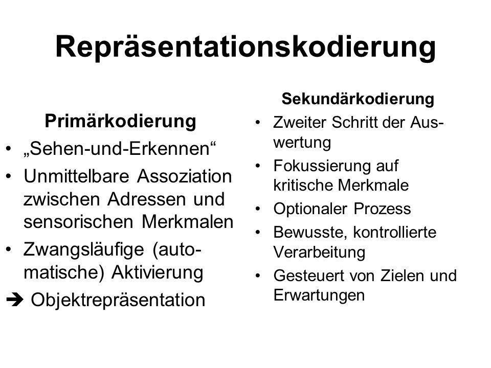 Repräsentationskodierung Primärkodierung Sehen-und-Erkennen Unmittelbare Assoziation zwischen Adressen und sensorischen Merkmalen Zwangsläufige (auto-