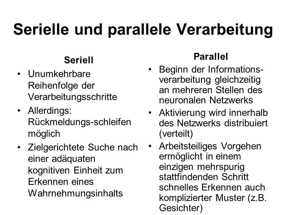 Serielle und parallele Verarbeitung Seriell Unumkehrbare Reihenfolge der Verarbeitungsschritte Allerdings: Rückmeldungs-schleifen möglich Zielgerichte
