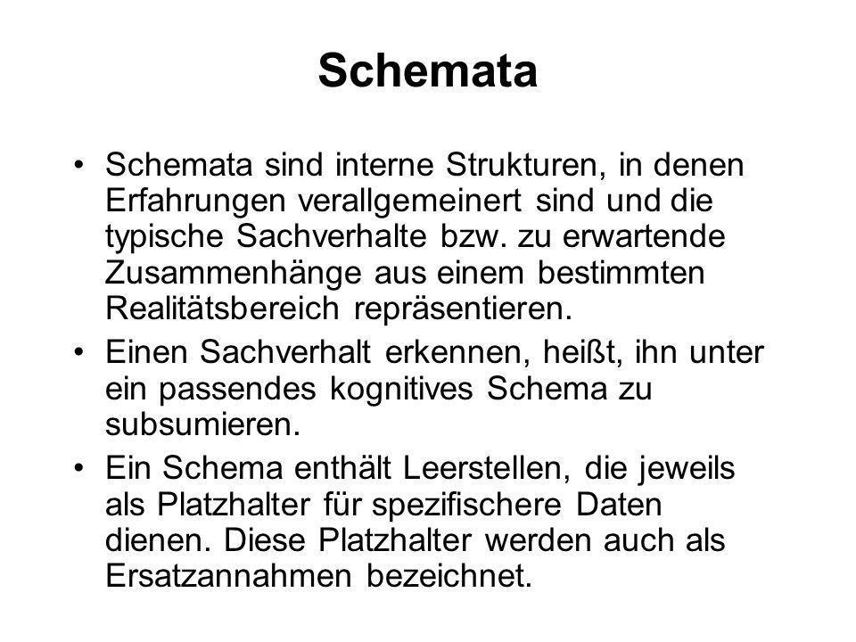 Schemata Schemata sind interne Strukturen, in denen Erfahrungen verallgemeinert sind und die typische Sachverhalte bzw. zu erwartende Zusammenhänge au