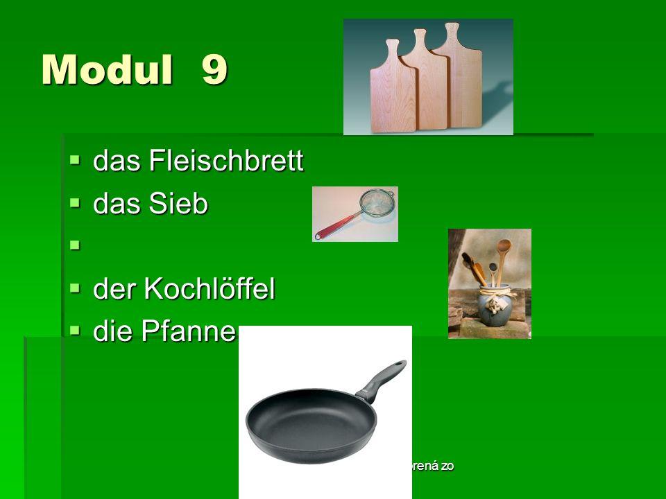 Táto publikácia bola podporená zo zdrojov EÚ z ESF. Modul 9 das Fleischbrett das Fleischbrett das Sieb das Sieb der Kochlöffel der Kochlöffel die Pfan