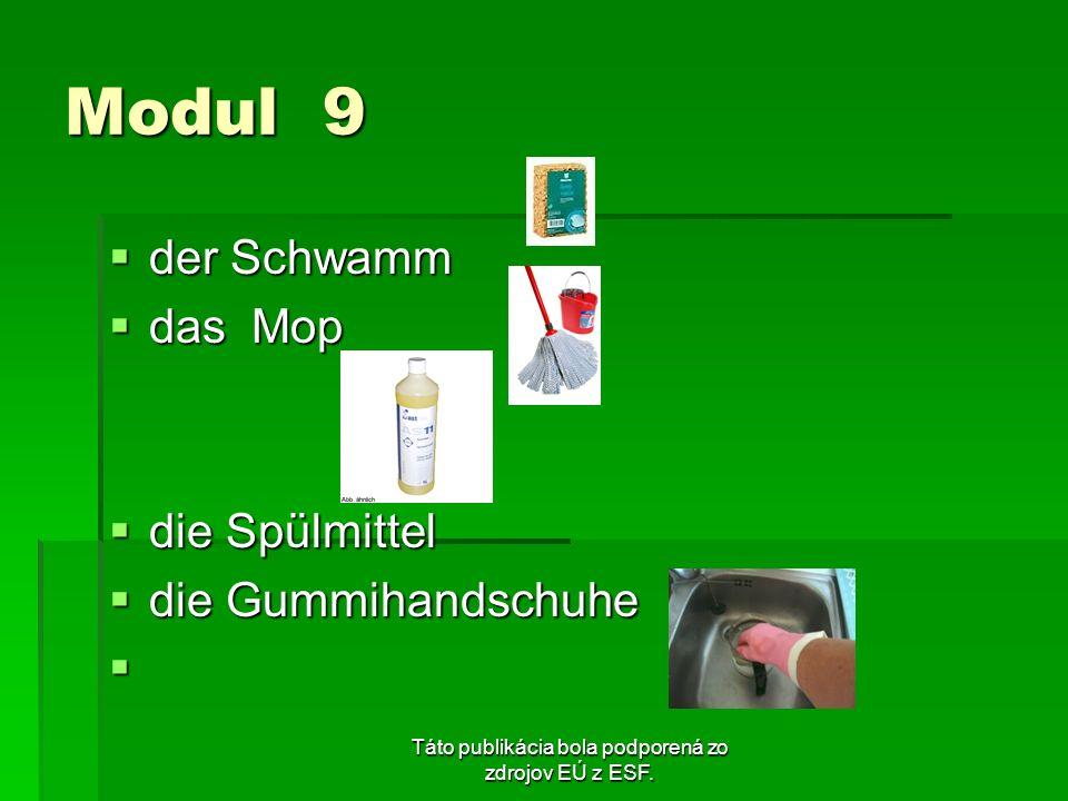 Táto publikácia bola podporená zo zdrojov EÚ z ESF. Modul 9 der Schwamm der Schwamm das Mop das Mop die Spülmittel die Spülmittel die Gummihandschuhe