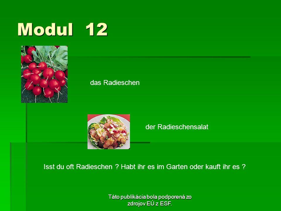 Táto publikácia bola podporená zo zdrojov EÚ z ESF. Modul 12 das Radieschen der Radieschensalat Isst du oft Radieschen ? Habt ihr es im Garten oder ka