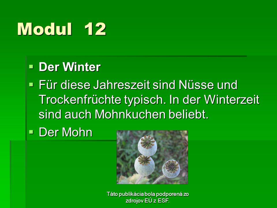 Táto publikácia bola podporená zo zdrojov EÚ z ESF. Modul 12 Der Winter Der Winter Für diese Jahreszeit sind Nüsse und Trockenfrüchte typisch. In der