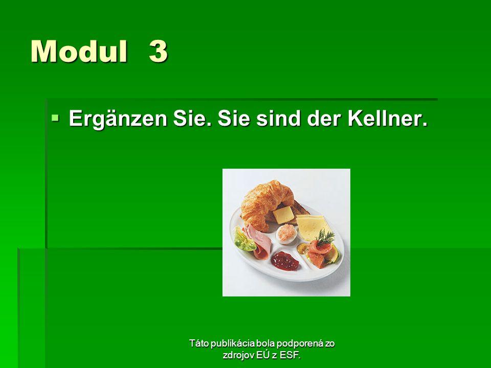 Táto publikácia bola podporená zo zdrojov EÚ z ESF. Modul 3 Ergänzen Sie. Sie sind der Kellner. Ergänzen Sie. Sie sind der Kellner.