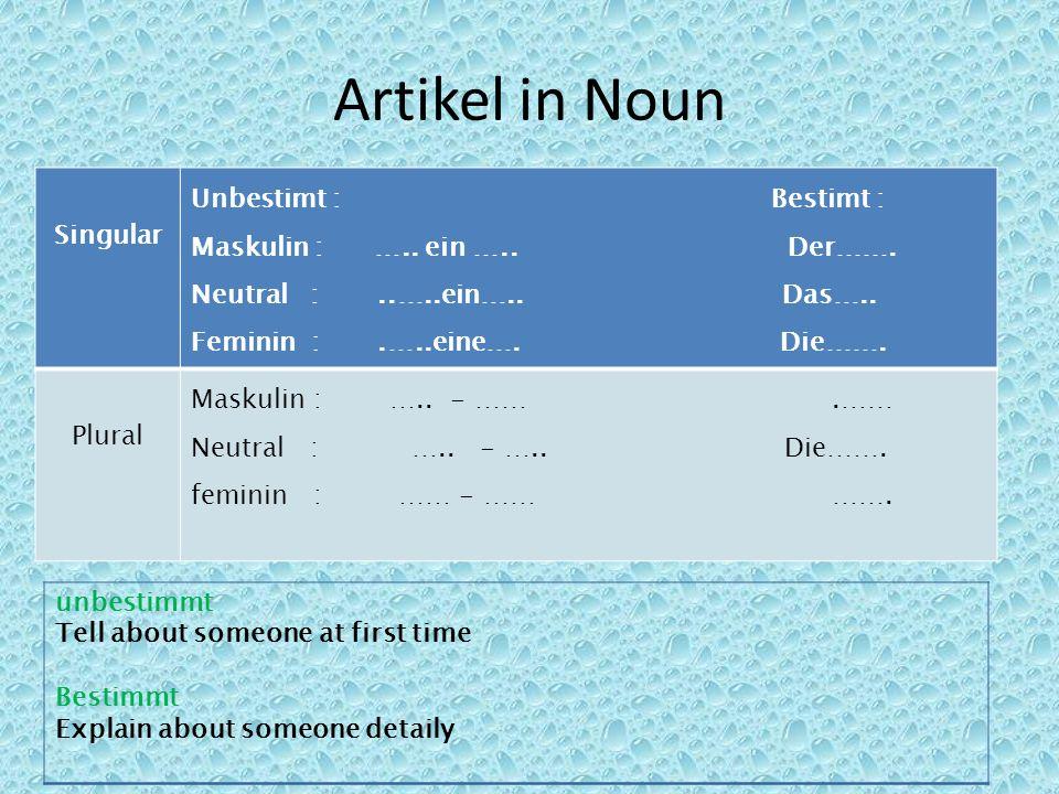 Artikel in Noun Singular Unbestimt : Bestimt : Maskulin : ….. ein ….. Der……. Neutral :..…..ein….. Das….. Feminin :.…..eine…. Die……. Plural Maskulin :
