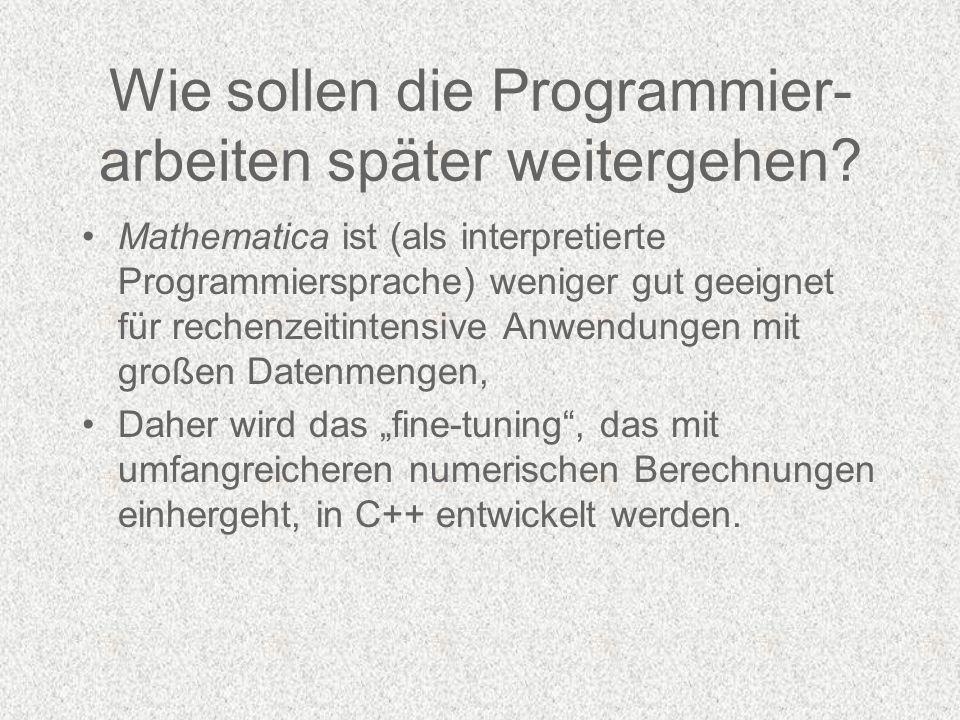 Wie sollen die Programmier- arbeiten später weitergehen.