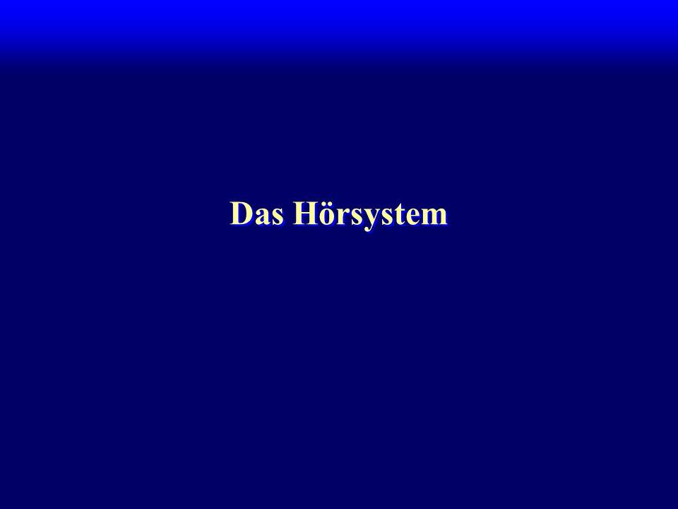 Das Hörsystem