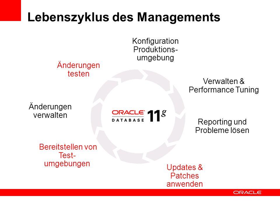 Lebenszyklus des Managements Reporting und Probleme lösen Konfiguration Produktions- umgebung Updates & Patches anwenden Änderungen verwalten Bereitst