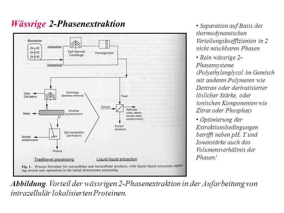 Wässrige 2-Phasenextraktion Abbildung. Vorteil der wässrigen 2-Phasenextraktion in der Aufarbeitung von intrazellulär lokalisierten Proteinen. Separat