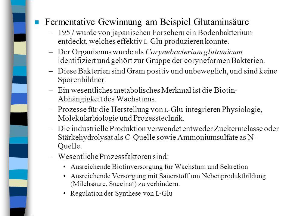 n Fermentative Gewinnung am Beispiel Glutaminsäure –1957 wurde von japanischen Forschern ein Bodenbakterium entdeckt, welches effektiv L -Glu produzie