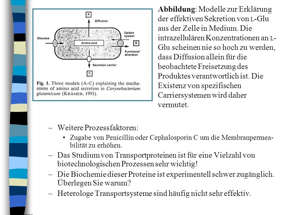 –Weitere Prozessfaktoren: Zugabe von Penicillin oder Cephalosporin C um die Membranpermea- bilität zu erhöhen. –Das Studium von Transportproteinen ist