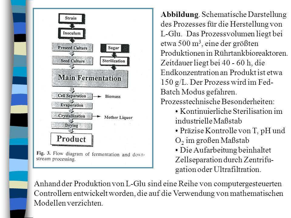 Abbildung. Schematische Darstellung des Prozesses für die Herstellung von L-Glu. Das Prozessvolumen liegt bei etwa 500 m 3, eine der größten Produktio