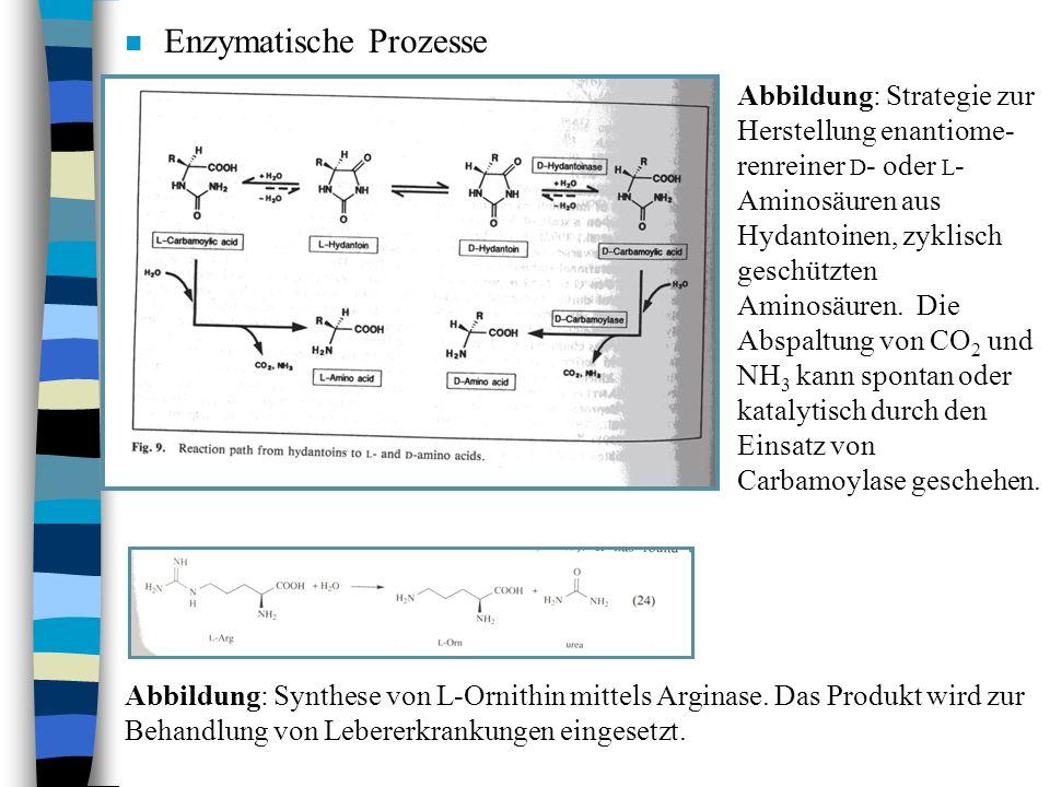 n Enzymatische Prozesse Abbildung: Strategie zur Herstellung enantiome- renreiner D - oder L - Aminosäuren aus Hydantoinen, zyklisch geschützten Amino