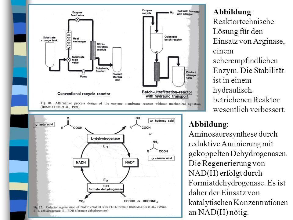 Abbildung: Reaktortechnische Lösung für den Einsatz von Arginase, einem scherempfindlichen Enzym. Die Stabilität ist in einem hydraulisch betriebenen