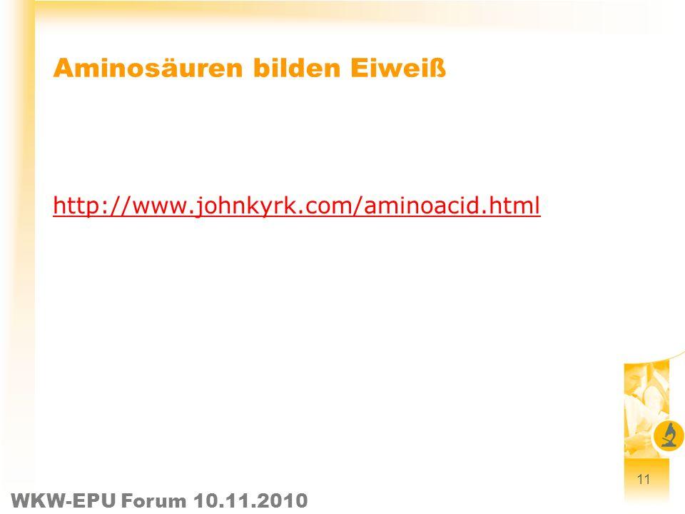WKW-EPU Forum 10.11.2010 Aminosäuren bilden Eiweiß http://www.johnkyrk.com/aminoacid.html 11