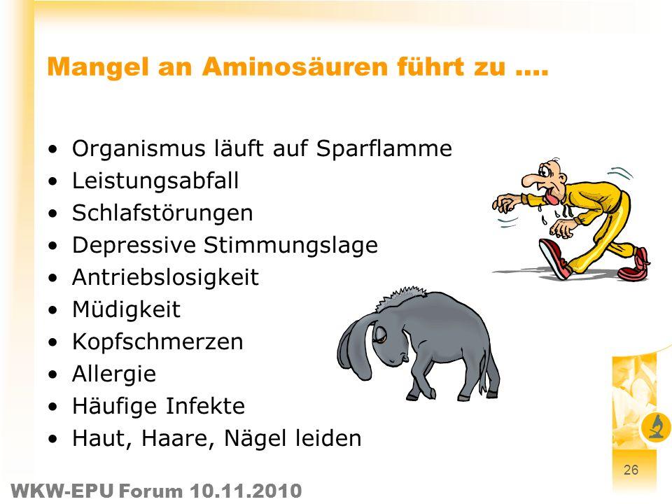 WKW-EPU Forum 10.11.2010 26 Mangel an Aminosäuren führt zu …. Organismus läuft auf Sparflamme Leistungsabfall Schlafstörungen Depressive Stimmungslage