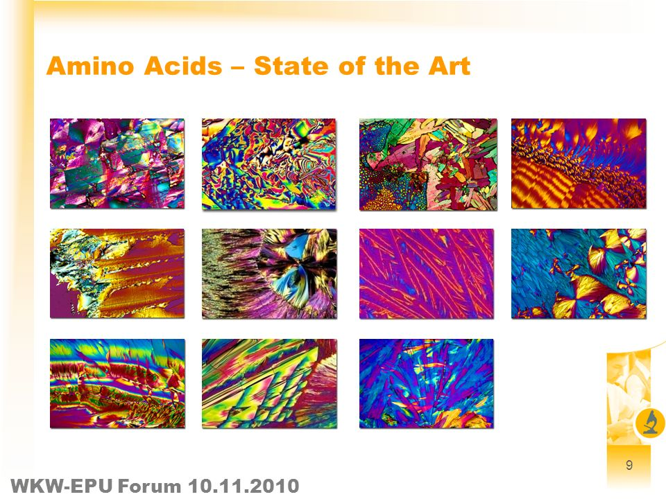WKW-EPU Forum 10.11.2010 9 Amino Acids – State of the Art