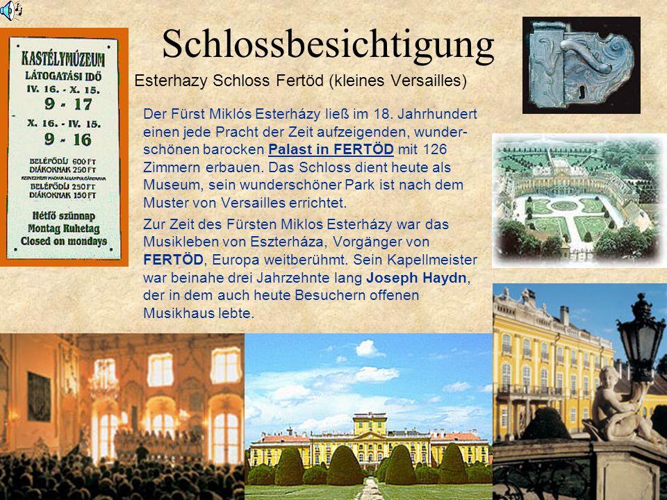 Schlossbesichtigung Esterhazy Schloss Fertöd (kleines Versailles) Der Fürst Miklós Esterházy ließ im 18.