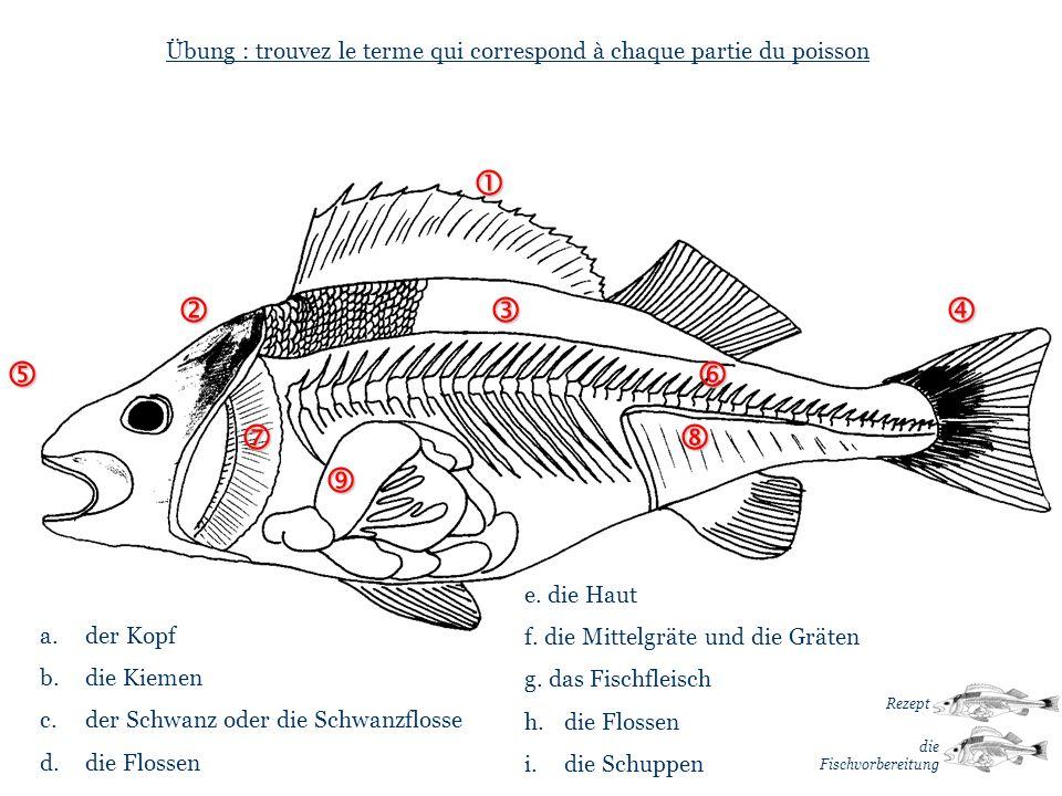 … … Übung : trouvez le terme qui correspond à chaque partie du poisson a. der Kopf b. die Kiemen c. der Schwanz oder die Schwanzflosse d. die Flossen