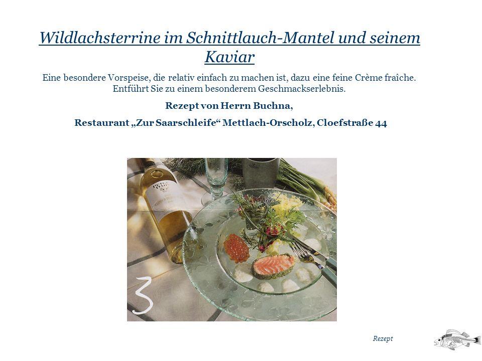 Wildlachsterrine im Schnittlauch-Mantel und seinem Kaviar Eine besondere Vorspeise, die relativ einfach zu machen ist, dazu eine feine Crème fraîche.