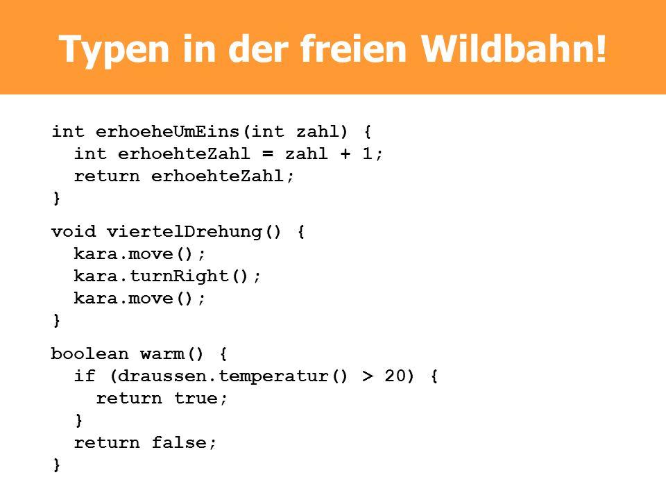 Typen in der freien Wildbahn! int erhoeheUmEins(int zahl) { int erhoehteZahl = zahl + 1; return erhoehteZahl; } void viertelDrehung() { kara.move(); k