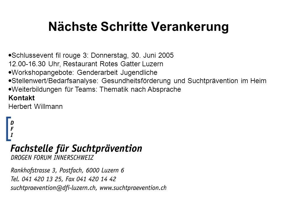 Nächste Schritte Verankerung Schlussevent fil rouge 3: Donnerstag, 30. Juni 2005 12.00-16.30 Uhr, Restaurant Rotes Gatter Luzern Workshopangebote: Gen