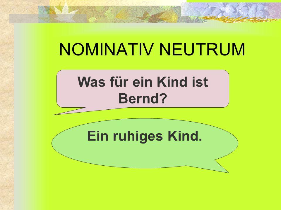 NOMINATIV NEUTRUM Was für ein Kind ist Bernd? Ein ruhiges Kind.
