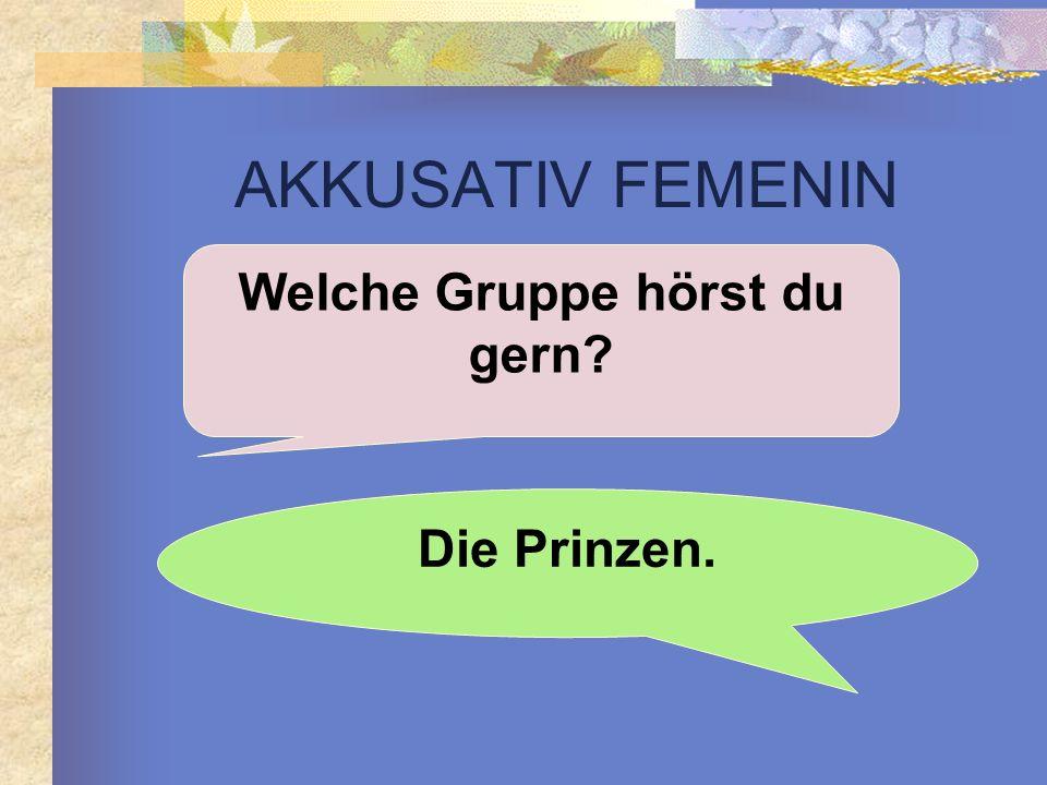 AKKUSATIV FEMENIN Welche Gruppe hörst du gern? Die Prinzen.