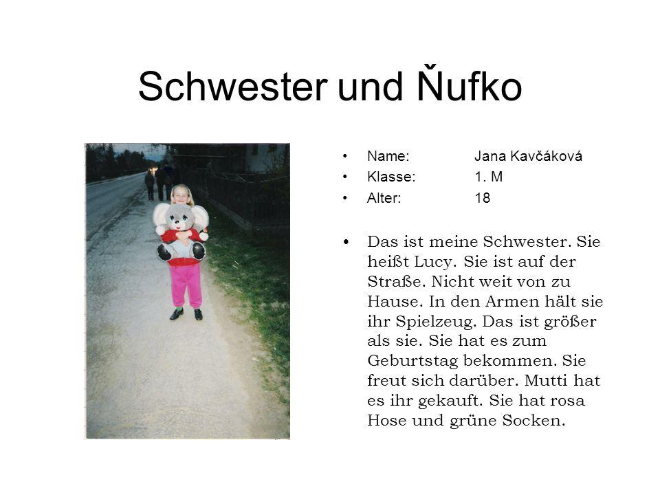 Schwester und Ňufko Name:Jana Kavčáková Klasse:1. M Alter:18 Das ist meine Schwester. Sie heißt Lucy. Sie ist auf der Straße. Nicht weit von zu Hause.