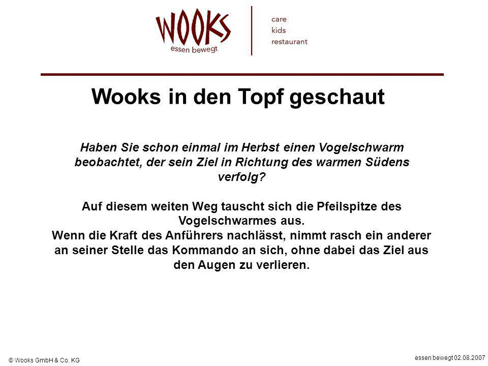 essen bewegt 02.08.2007 © Wooks GmbH & Co. KG Haben Sie schon einmal im Herbst einen Vogelschwarm beobachtet, der sein Ziel in Richtung des warmen Süd