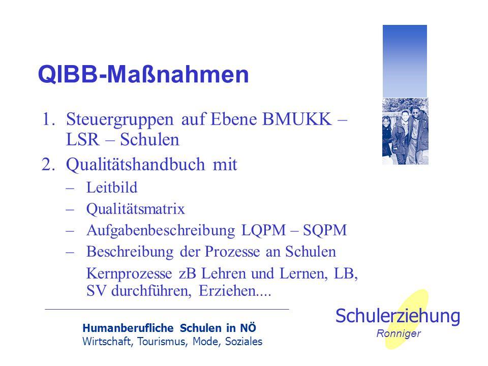 Humanberufliche Schulen in NÖ Wirtschaft, Tourismus, Mode, Soziales Schulerziehung Ronniger QIBB-Maßnahmen 1.Steuergruppen auf Ebene BMUKK – LSR – Sch