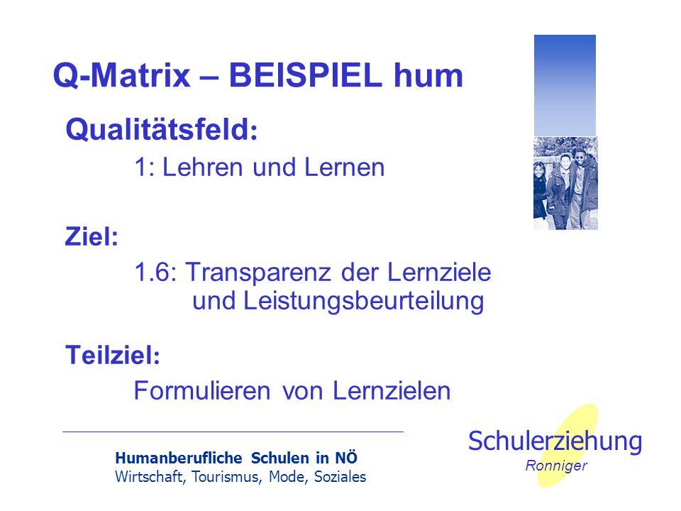 Humanberufliche Schulen in NÖ Wirtschaft, Tourismus, Mode, Soziales Schulerziehung Ronniger Q-Matrix – BEISPIEL hum Qualitätsfeld : 1: Lehren und Lern