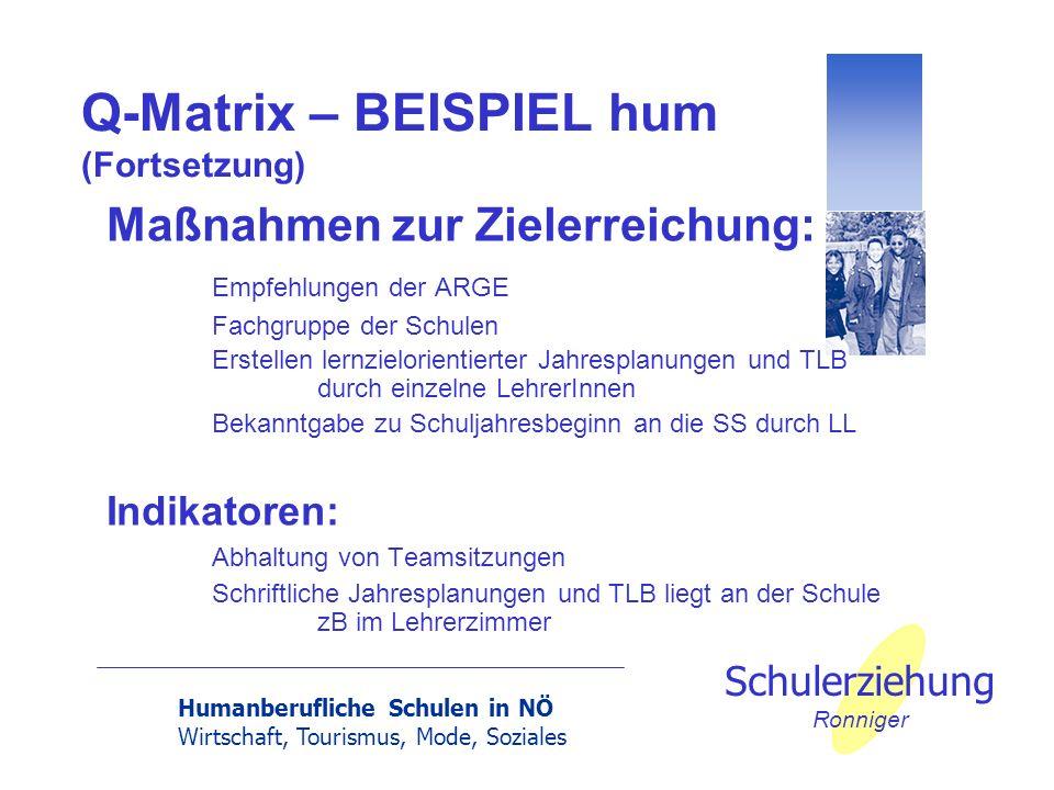 Humanberufliche Schulen in NÖ Wirtschaft, Tourismus, Mode, Soziales Schulerziehung Ronniger Q-Matrix – BEISPIEL hum (Fortsetzung) Maßnahmen zur Zieler