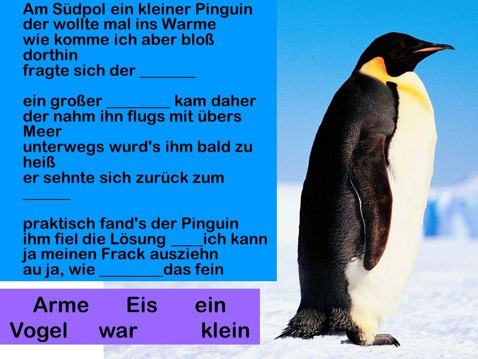 Am Südpol ein kleiner Pinguin der wollte mal ins Warme wie komme ich aber bloß dorthin fragte sich der _______ ein großer ________ kam daher der nahm ihn flugs mit übers Meer unterwegs wurd s ihm bald zu heiß er sehnte sich zurück zum ______ praktisch fand s der Pinguin ihm fiel die Lösung ____ich kann ja meinen Frack ausziehn au ja, wie ________das fein Arme Eis ein Vogel war klein