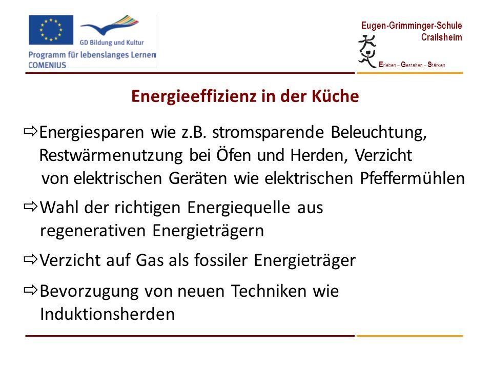 E rleben – G estalten – S tärken Eugen-Grimminger-Schule Crailsheim Energieeffizienz in der Küche Energiesparen wie z.B. stromsparende Beleuchtung, Re