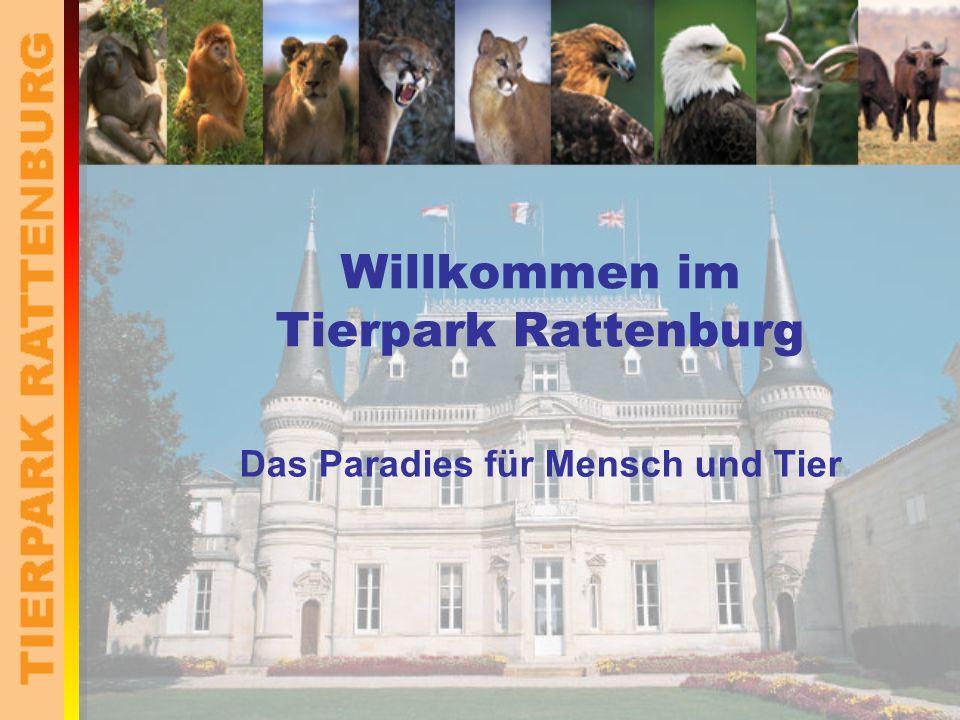 Willkommen im Tierpark Rattenburg Das Paradies für Mensch und Tier