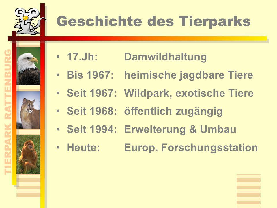 TIERPARK RATTENBURG Geschichte des Tierparks 17.Jh: Damwildhaltung Bis 1967: heimische jagdbare Tiere Seit 1967: Wildpark, exotische Tiere Seit 1968: öffentlich zugängig Seit 1994: Erweiterung & Umbau Heute: Europ.
