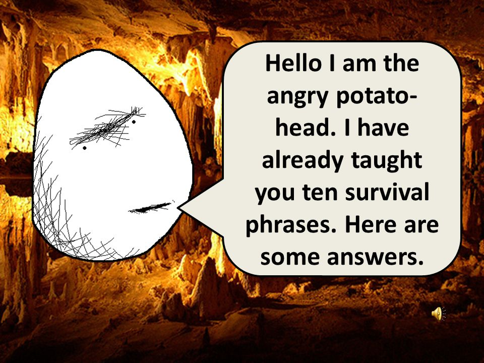 Hello I am the angry potato- head.I have already taught you ten survival phrases.