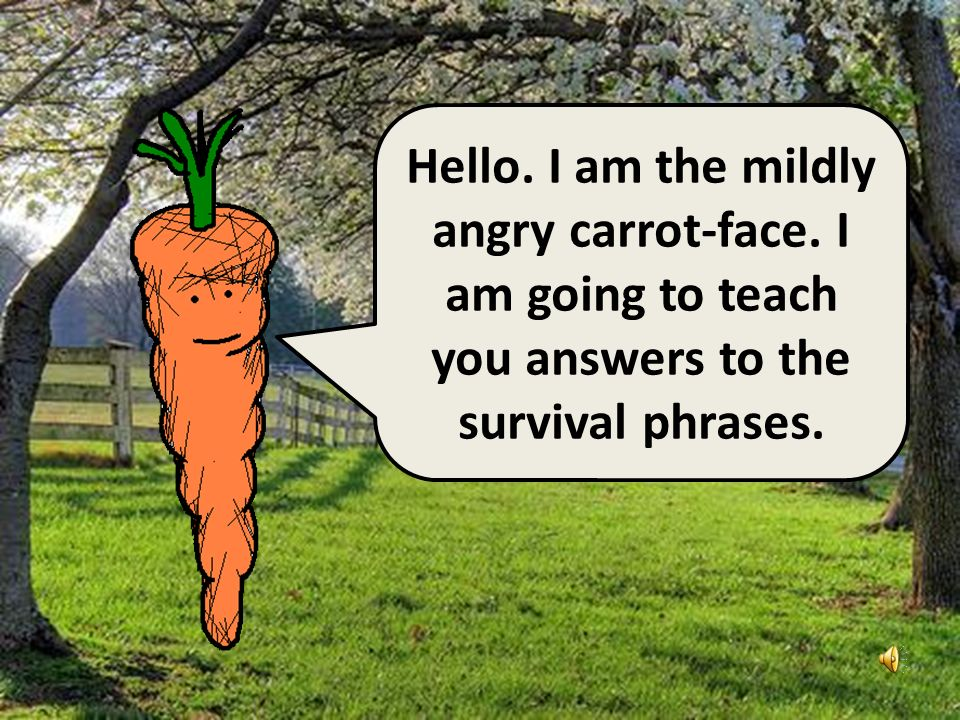Hello I am the angry potato- head. I have already taught you ten survival phrases. Here are some answers.