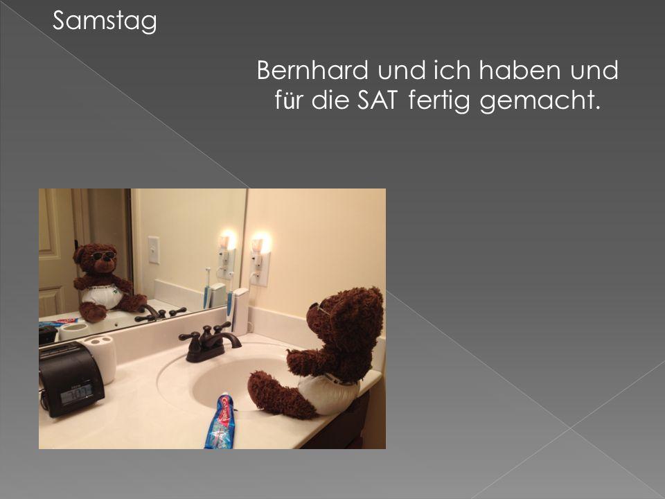 Samstag Bernhard und ich haben und f ü r die SAT fertig gemacht.
