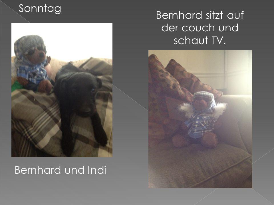 Sonntag Bernhard und Indi Bernhard sitzt auf der couch und schaut TV.