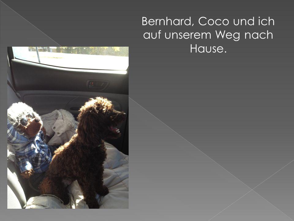 Bernhard, Coco und ich auf unserem Weg nach Hause.