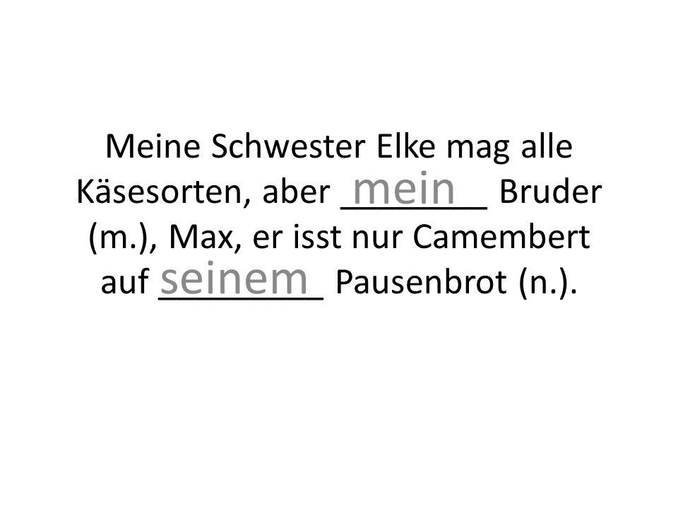 Meine Schwester Elke mag alle Käsesorten, aber ________ Bruder (m.), Max, er isst nur Camembert auf _________ Pausenbrot (n.).