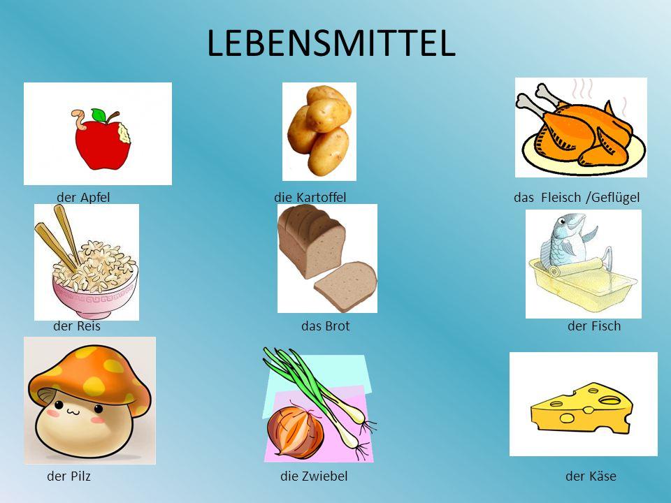 LEBENSMITTEL der Apfel die Kartoffel das Fleisch /Geflügel der Reis das Brot der Fisch der Pilz die Zwiebel der Käse