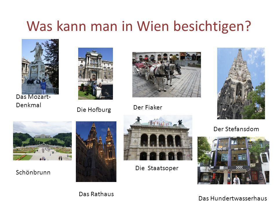 Was kann man in Wien besichtigen.
